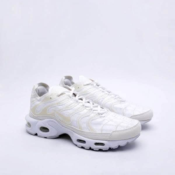 Кроссовки Nike Air Max Plus Decon (CD0882-100)